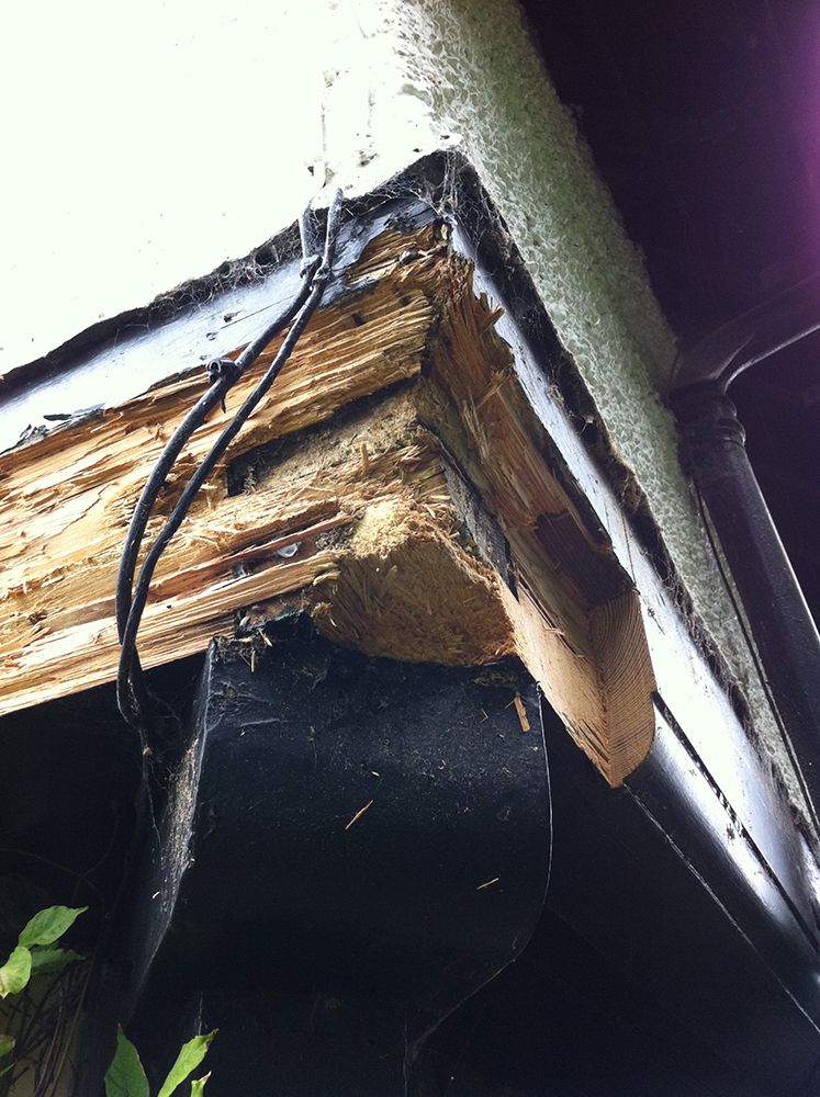 complex rot in load bearing beam